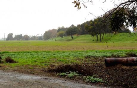 Brannan-Island-Farm