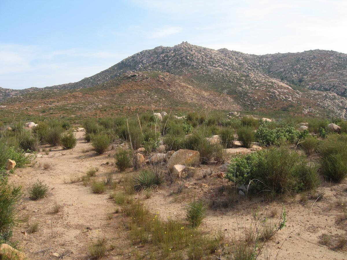 El Cap Plateau