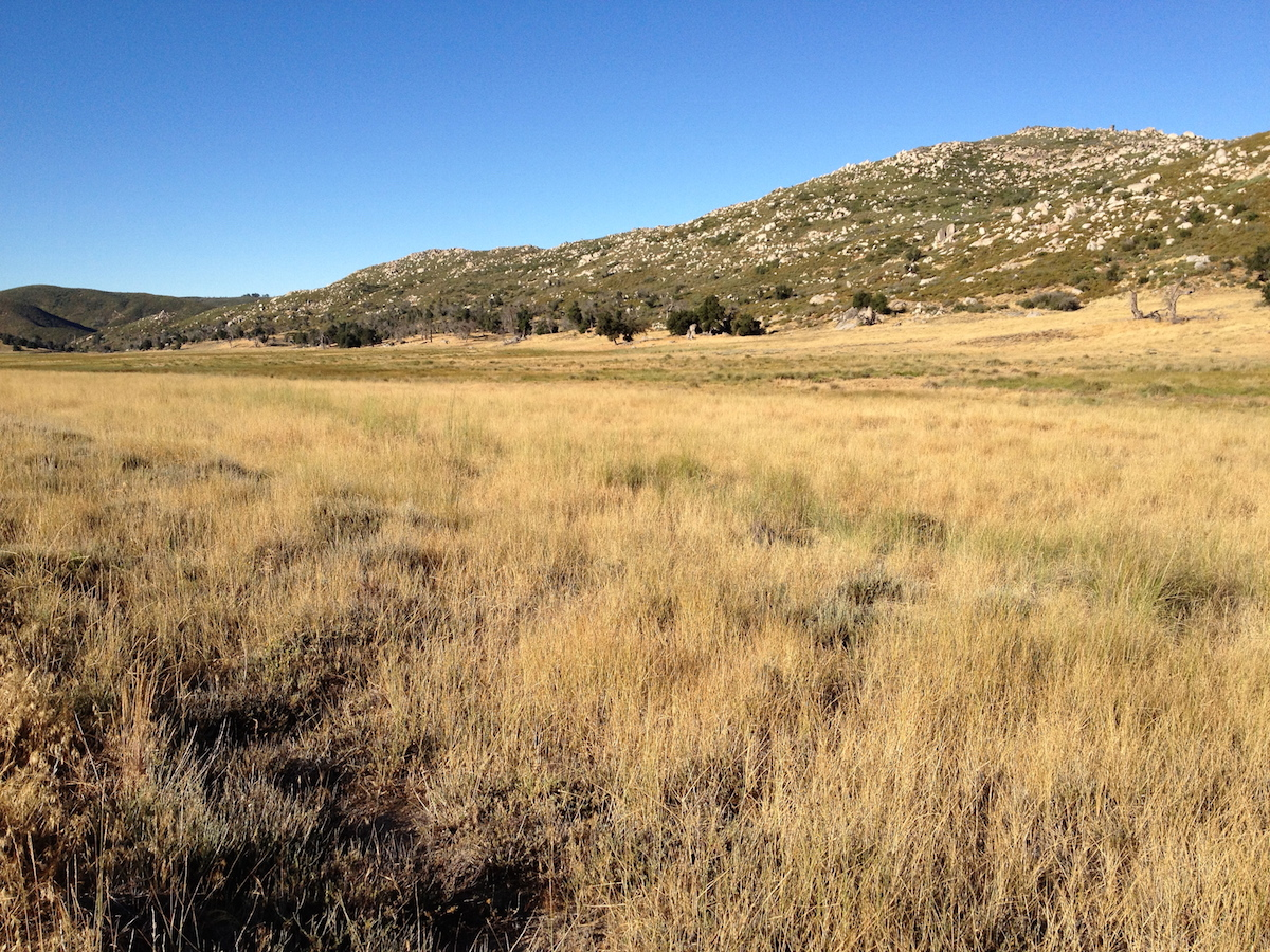 Conservation Land Group 78