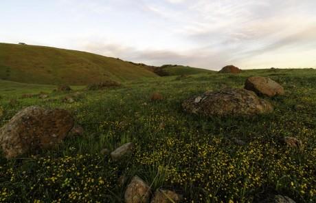Coyote-Ridge-Rocks