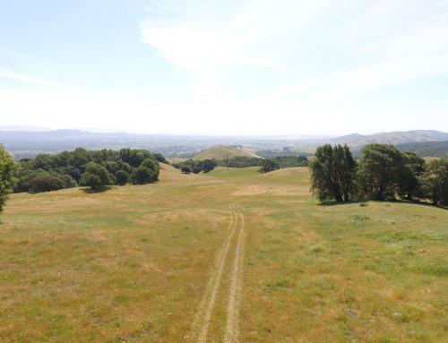 Felder Ranch